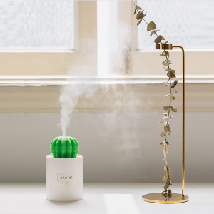 Cactus Humidifier Night Lamp
