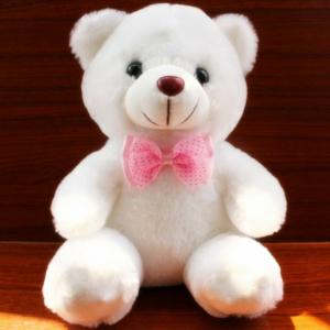 LED Light Up Teddy Bear Toy