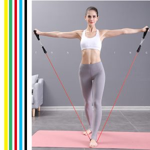 Resistance Bands Set (11pcs), Exercise Bands with Door Anchor, Handles, Waterproof Carry Bag, Legs Ankle Straps for Resistance Training