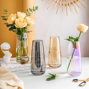 Multi-colour Coating Glass Flower Vase